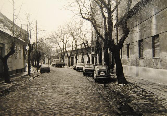 gomborski sokak 1