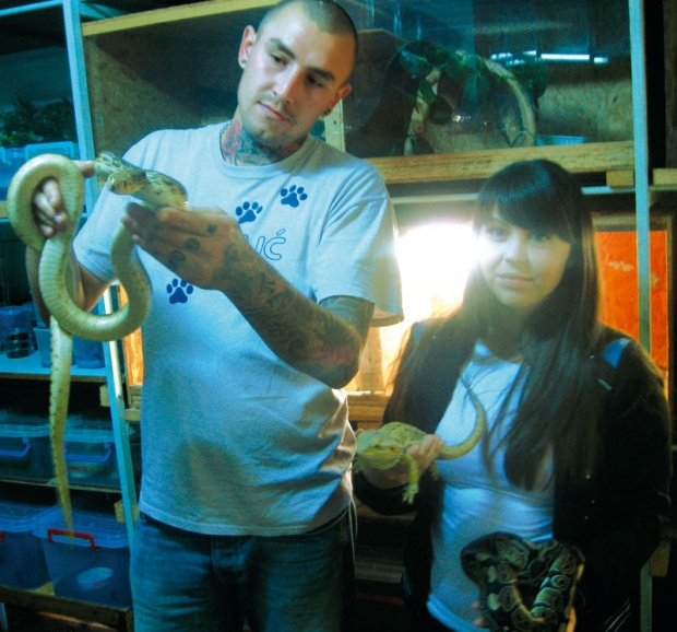 zmije i tarantule