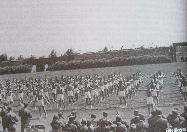 szabadka 1941