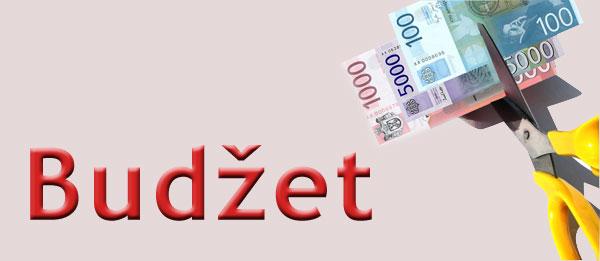 budzet_heder