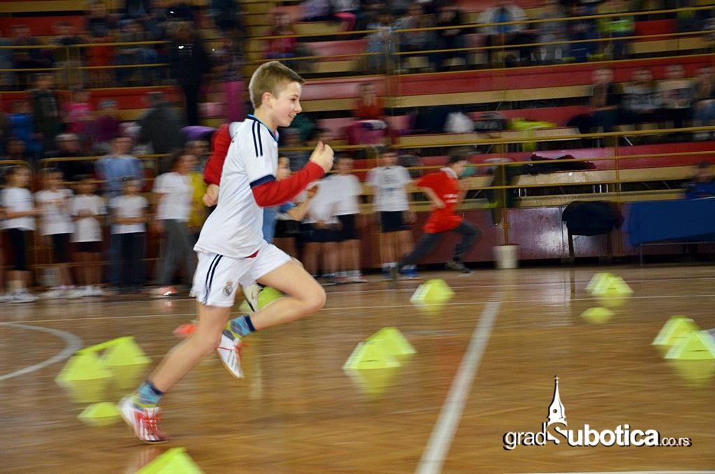 Hala sportova - humanitarni dan za Biljanu (6)