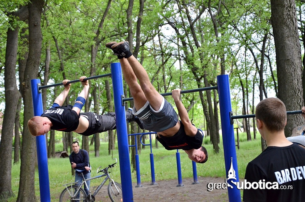 Dudova suma - Street workout (16)