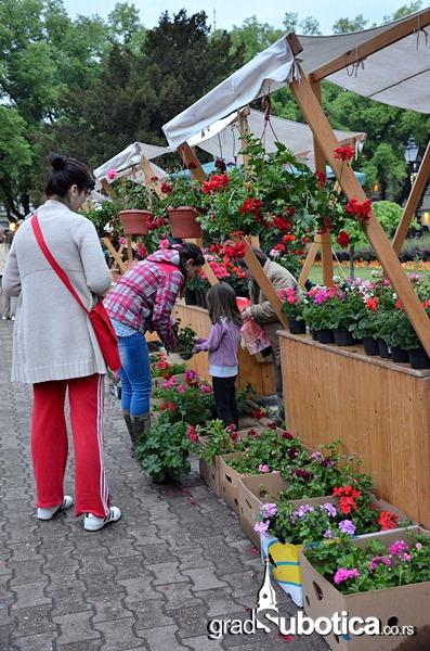 Garden flora - trg republike (5)