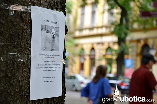 Drvo nije bilbord ciscenje (1)
