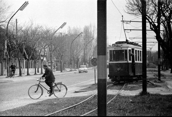 subotica tramvaj