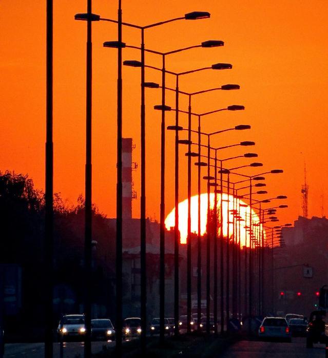 sunset bulevard