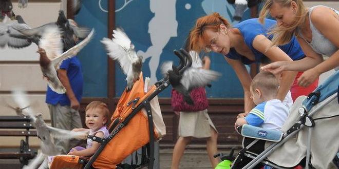 Novi Sad, 3.08.2015. - Mame setaju bebe kroz centar grada. (BETAPHOTO/DRAGAN GOJIC/DS)