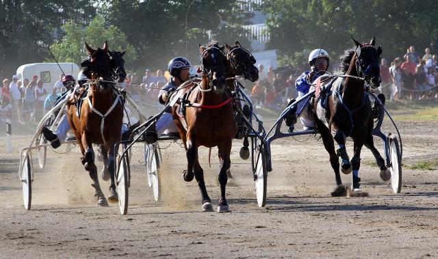 konjicki sport (1)