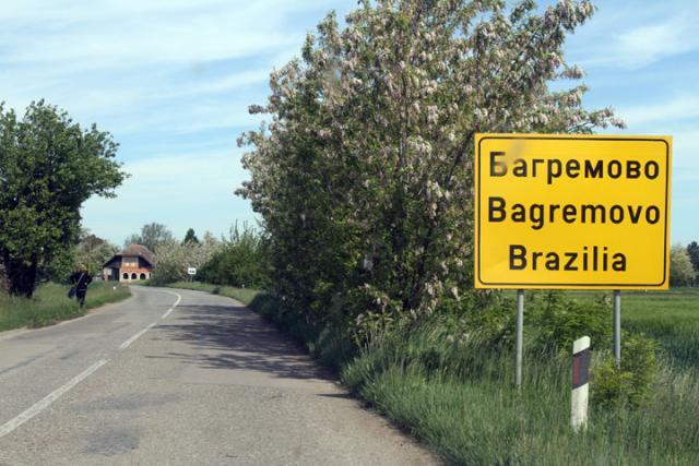 bagremovo brazilija