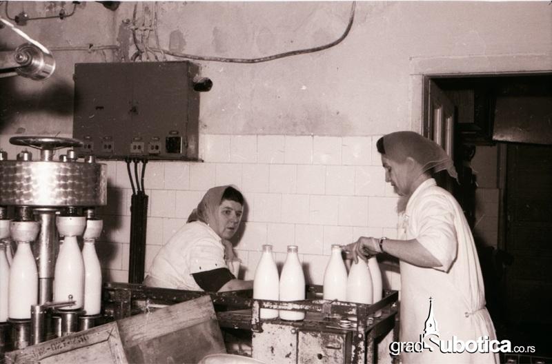 stara mlekara subotica (5)